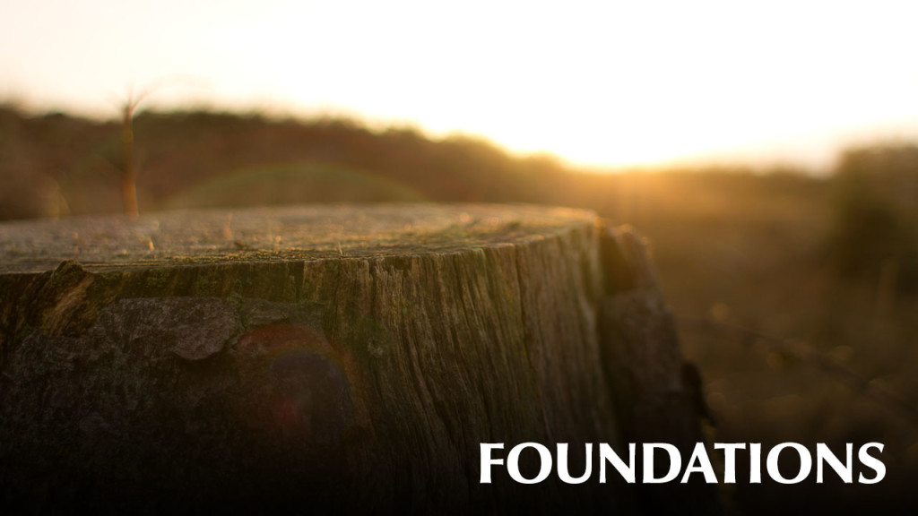 NextSteps-foundations